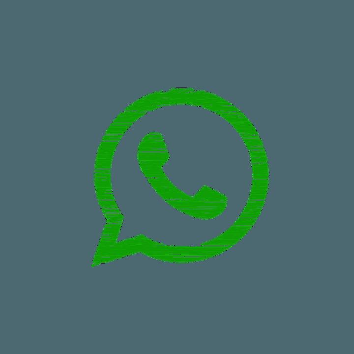 La guerra de las videollamadas y la irrupción de los hologramas - WhatsApp