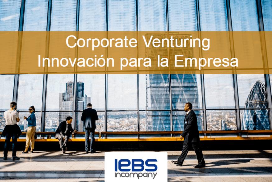 Innovar para la empresa: Corporate Venturing y otras soluciones - SOLICITA LA AYUDA INNOVA 1