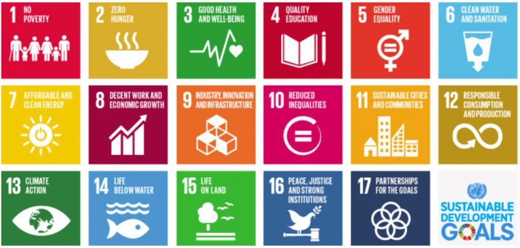 La digitalización como herramienta para lograr los objetivos de desarrollo sostenible - Objetivos desarrollo sostenible ODS 1024x489