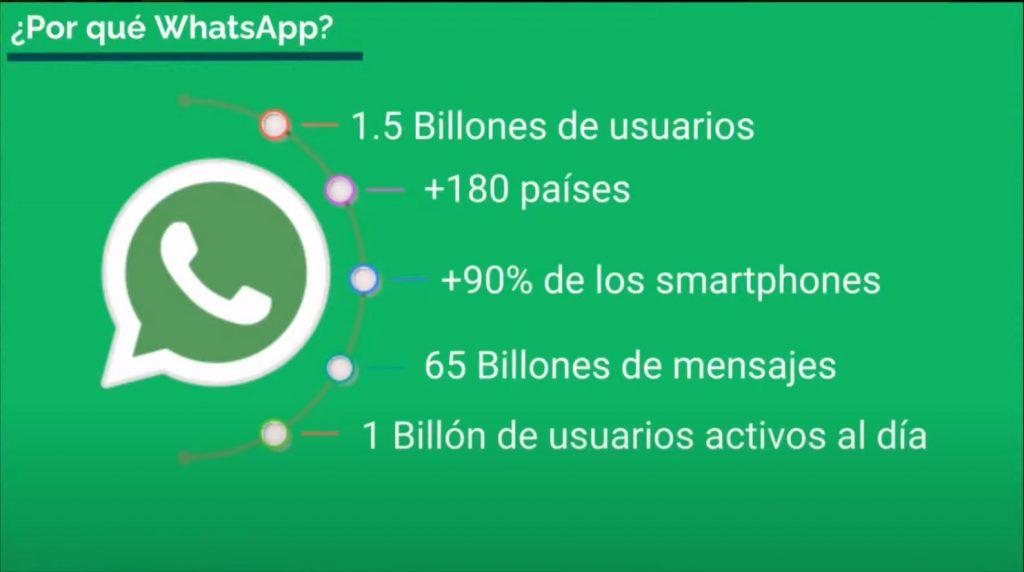Cómo crear un Chatbot para Whatsapp paso a paso - chatbot whatsapp 2 1024x572