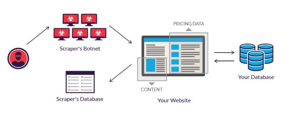 Qué es el web scrapping y cómo se utiliza en los negocios - image